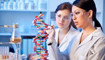 Two genetic scientists chemists working together in a lab