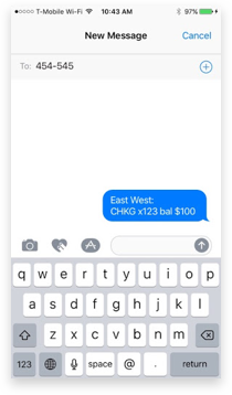 Mobile text message screen requesting account balance