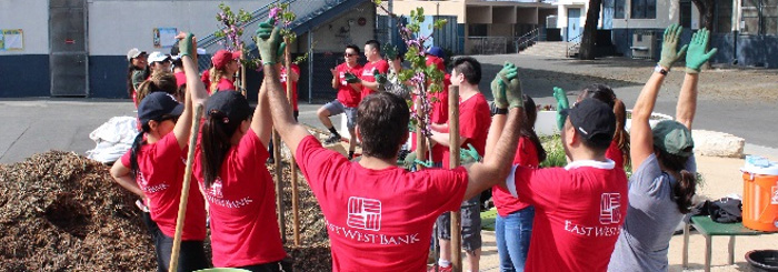 Bank employees cheer together after successful tree planting project